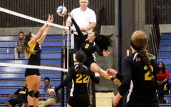 Volleyball 10-2 in conference