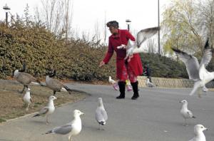 Birds cause havoc for pedestrians