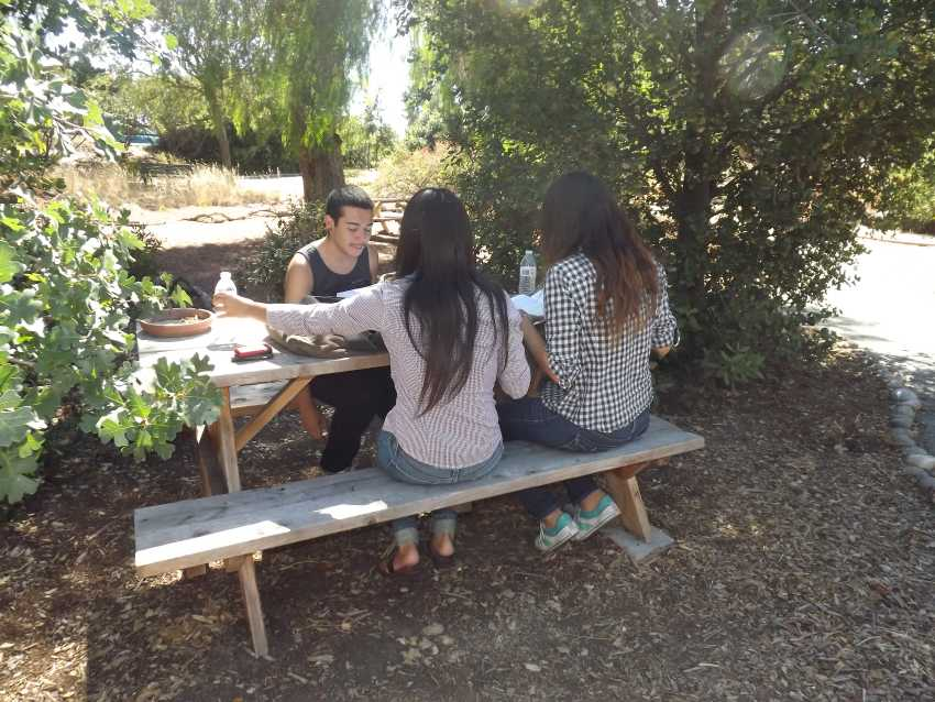 Students relax and do some studying at the nature preserve.