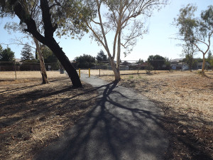 The south entrance to the LMC Lake via the Delta De Anza Trail where the student was attacked.