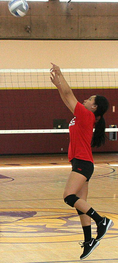 LMC+volleyball+gears+up+for+fall