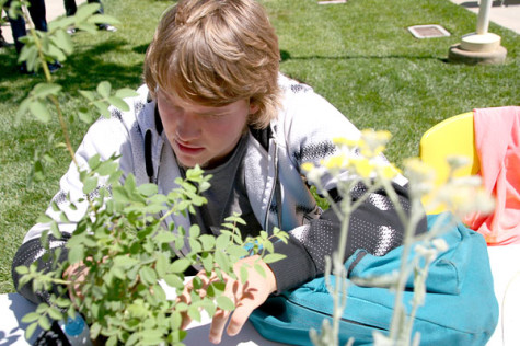 Josh Kohl is helping sell plants and trees to raise money for the Nature Preserve.