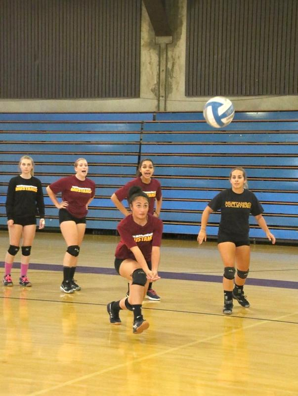 Janessa Seei hits the ball during practice as Aubree De Jesus, Kila Stevens, Calissa Leming and Linsay Baynes cheer her on.