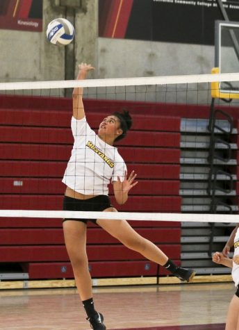 Volleyball is primed for success