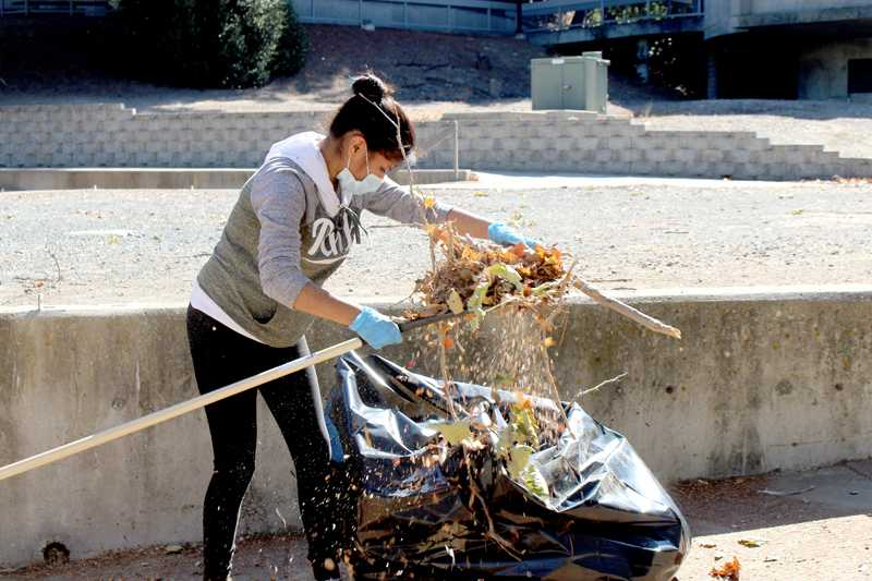 LMC student Diana Orozco volunteers at the amphitheater cleanup event Saturday, Oct. 1.