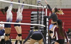 Volleyball repeats success this year